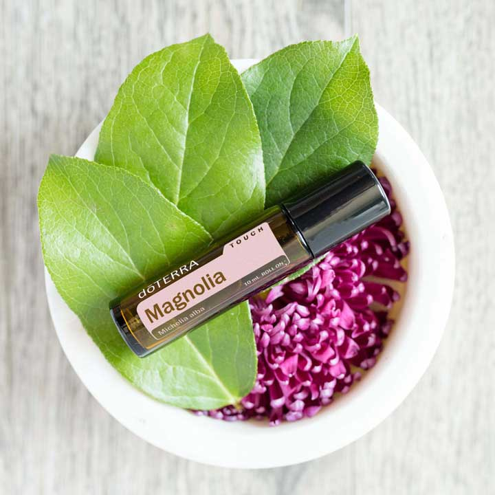 16×9-magnolia-uses-benefits-lifestyle-us-english-web